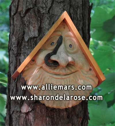 Snake in the Old Man Face Birdhouse
